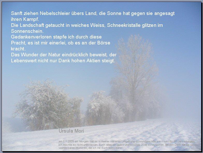 Gedicht Neujahrsmorgen von Ursula Mori bei e-Stories.de ...